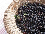 Blackcurrants Fresh Frozen 450gr
